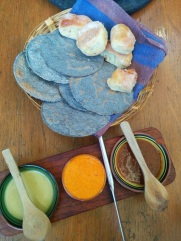 sauces et tortillas