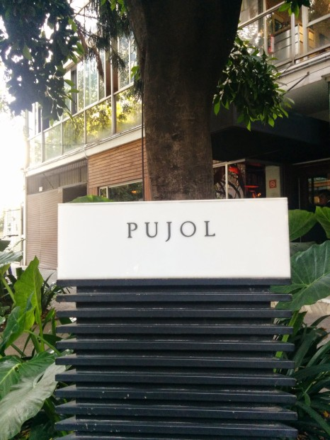 Pujol, polanco district